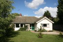 Detached Bungalow in Framlingham