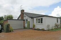 4 bedroom Detached Bungalow for sale in Framlingham