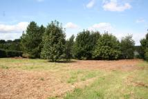 Land in Martlesham, near Ipswich for sale