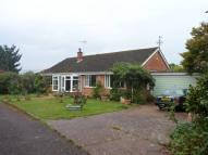 3 bedroom Detached Bungalow in Willoween, Sidford...