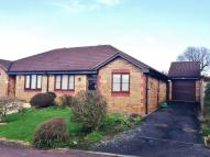 2 bed Semi-Detached Bungalow for sale in Cypress Close, Honiton