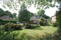 Detached Bungalow for sale in Maidstone Road, Wigmore...