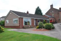 3 bed Detached Bungalow to rent in Houghton Road North...