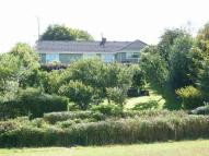 Detached Bungalow in Roachill -  Exmoor...