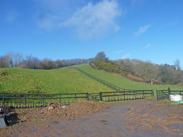 4 acre paddock and stables