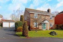 Detached property in Davies Close...