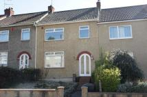 Terraced house to rent in Marion Walk, St George...