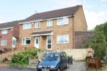 3 bedroom semi detached property to rent in Peart Drive...