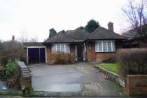 Detached Bungalow in Woden Road East...