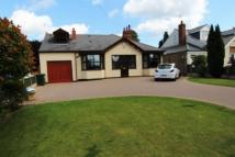 Detached Bungalow for sale in Bustleholme Lane...