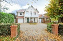 Detached house to rent in Winterdown Road, Esher...