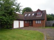Detached property to rent in Park Green, Bookham...