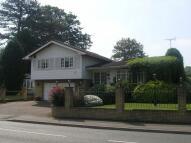 5 bedroom Detached house in Milbourne Lane, Esher...
