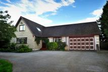 4 bedroom Detached home in The Orchard...