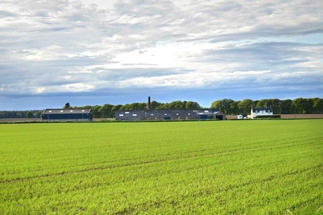 Earnhill Farm