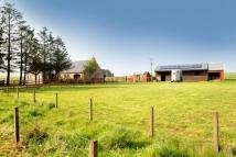 Equestrian Facility house for sale in Newton Of Broomhill...