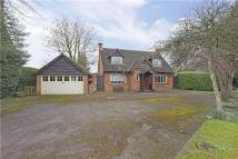 3 bed house to rent in Berries Road, Cookham...