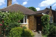 4 bedroom Bungalow to rent in Webster Close...