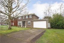 4 bed property in Silvertrees Drive...