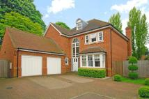 Detached property in Endfield Place...