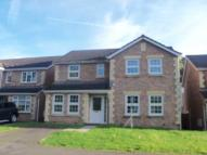Detached house to rent in 11 Manor Court...