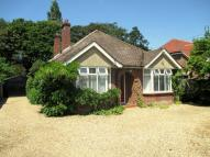 3 bed Detached Bungalow for sale in The Street, Bramley