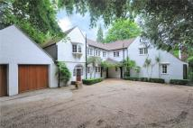 6 bed Detached house in Hindhead Road, Hindhead...