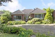 3 bed Bungalow to rent in Hare Lane...