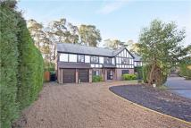 5 bedroom Detached property to rent in Grange Gardens...