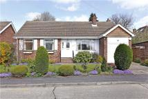 Bungalow to rent in Russell Close, Amersham...