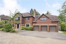 Ledborough Gate Detached house to rent