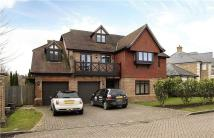 Detached home in 14 Ledborough Gate...