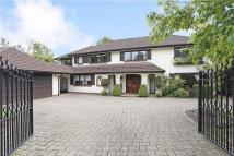 Detached house to rent in Woodchester Park...