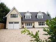 property to rent in Knottocks Drive...
