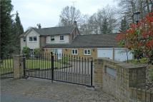 4 bed Detached house to rent in Dukes Covert, Bagshot...