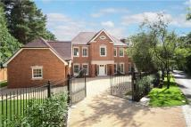 Detached house in Shrubbs Hill Lane, Ascot...
