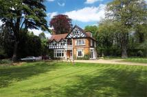 Woburn Hill Detached house to rent