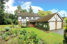 4 bed Detached property to rent in Redwood Drive...