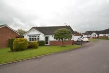 2 bed Detached Bungalow in Osborn Close  ...