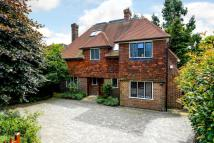 Detached property to rent in Kingsmere Road London...