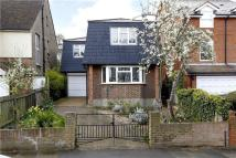 Detached house to rent in Dora Road, Wimbledon...