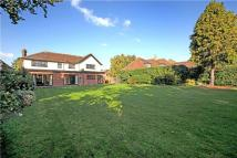 4 bedroom Detached home to rent in Kingswood Rise...