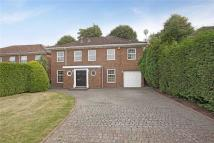 Detached property to rent in Harrington Close...