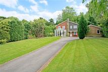 4 bedroom Detached house in St Leonards Hill...