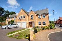 Detached property to rent in Lime Tree Avenue...