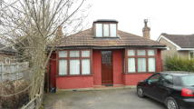 Detached Bungalow in Feltham Road
