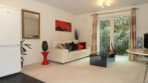 Apartment to rent in  Ashcombe Court