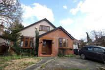 4 bed Detached Bungalow for sale in Summerhouse Drive...