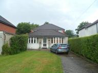 4 bedroom Bungalow in Birchwood Road, Dartford...