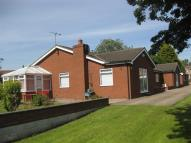 Detached Bungalow in York Road...